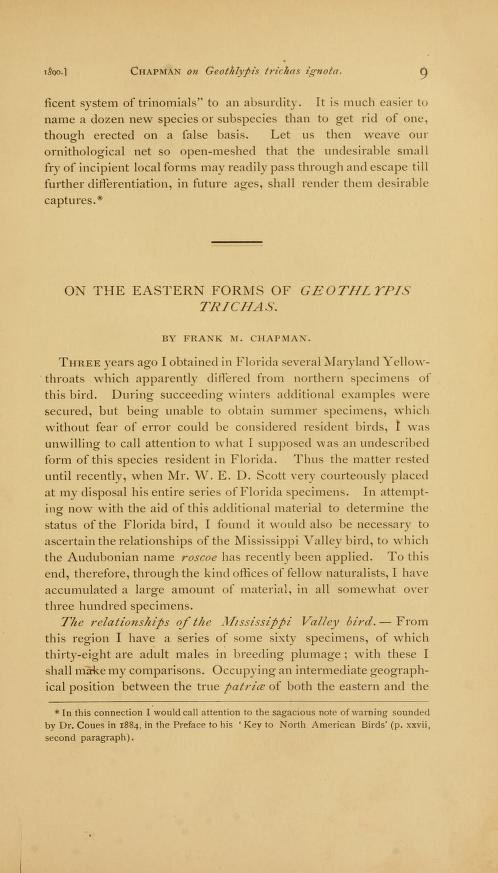 On the Eastern Form of Geothlypis trichas
