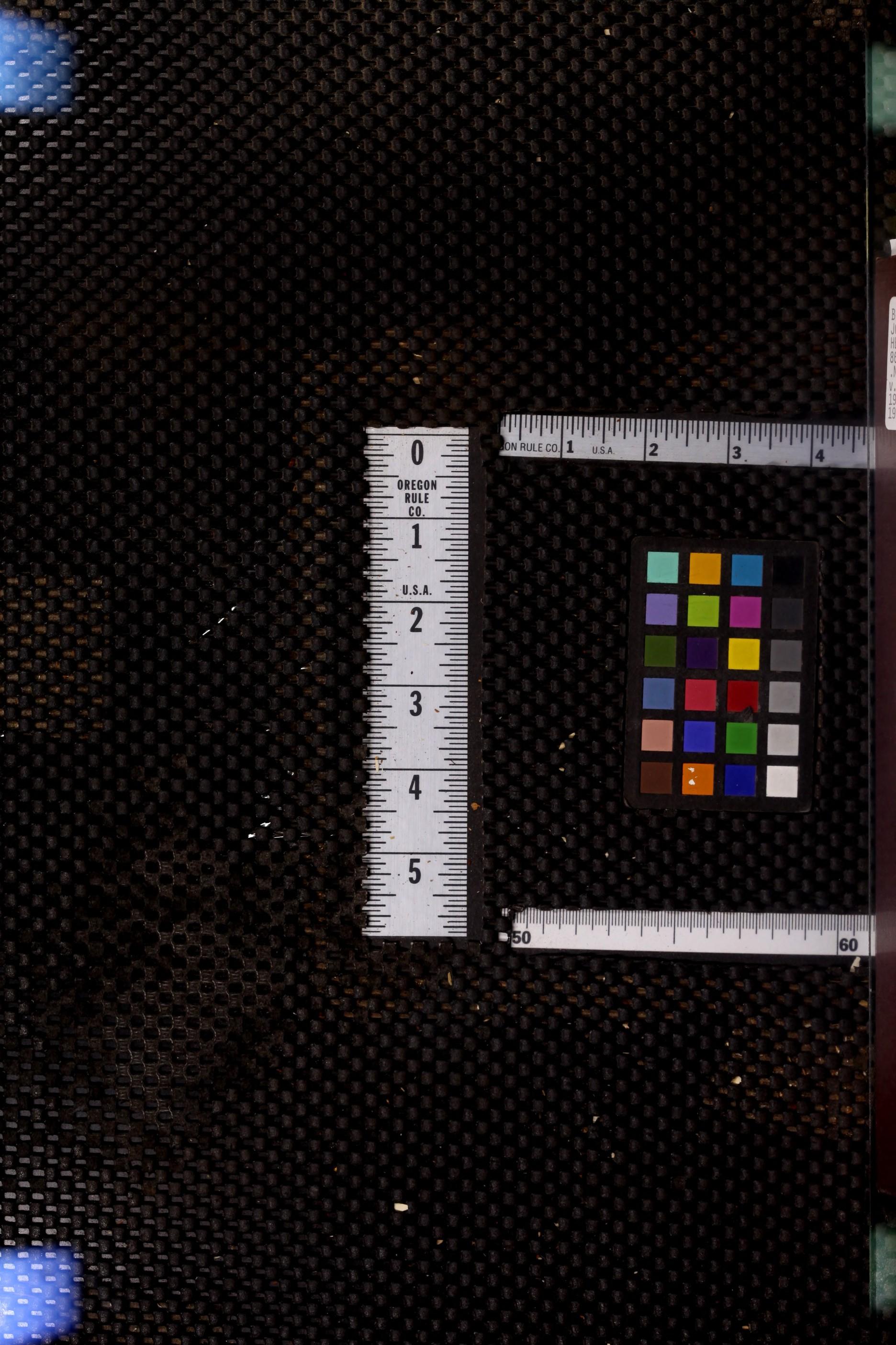 Nbctransmitter2193nati_jp2.zip&file=nbctransmitter2193nati_jp2%2fnbctransmitter2193nati_0000